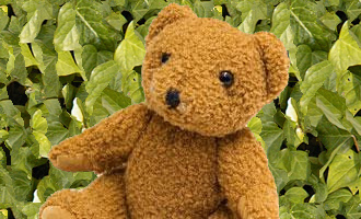 Bear with ivy