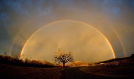 Rainbow rcjrpeozi