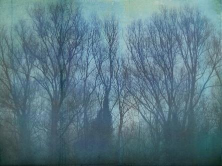 happy_winter_solstice_513737