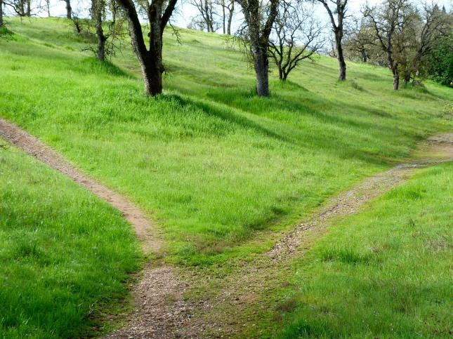 hiking_path_599_195911
